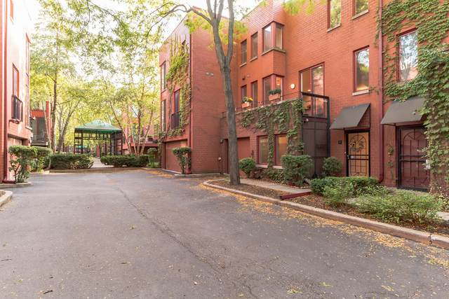 1226 S Federal Street C, Chicago, IL 60605 (MLS #10979521) :: Ryan Dallas Real Estate