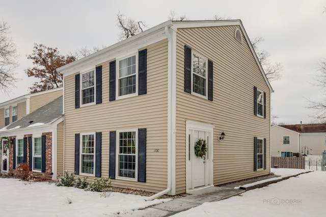 1100 Oak Valley Drive #1100, Cary, IL 60013 (MLS #10979537) :: Touchstone Group