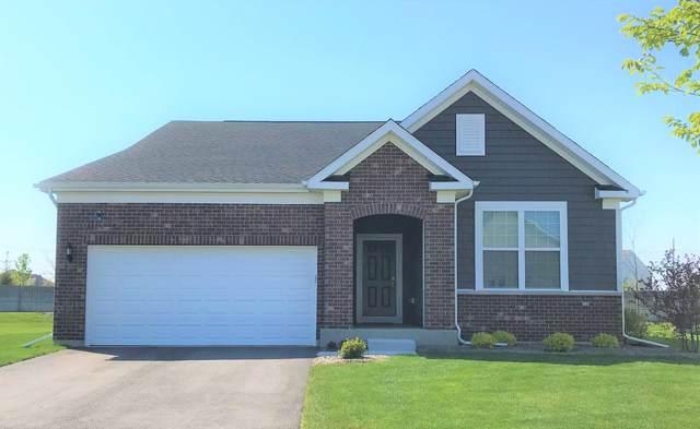 4047 Lobo Lane, Naperville, IL 60564 (MLS #10979560) :: The Dena Furlow Team - Keller Williams Realty