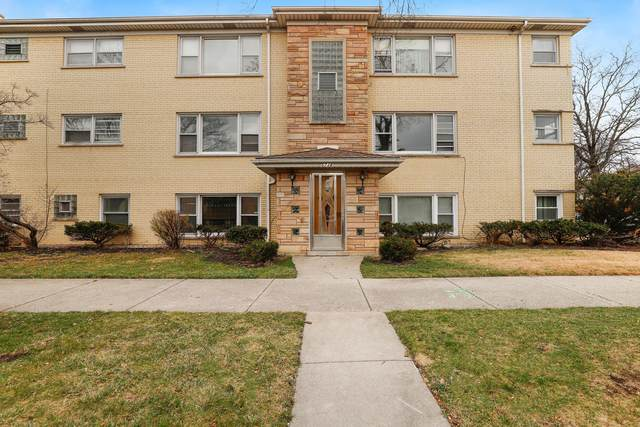 5738 W Higgins Avenue 1S, Chicago, IL 60630 (MLS #10979613) :: Schoon Family Group