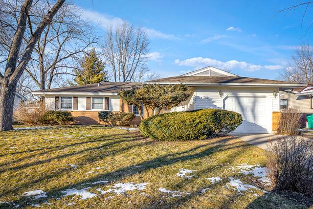 442 Lilac Lane, Elk Grove Village, IL 60007 (MLS #10979621) :: Janet Jurich