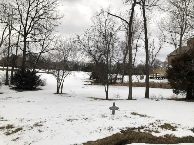 70 Hillburn Lane, North Barrington, IL 60010 (MLS #10979980) :: Jacqui Miller Homes