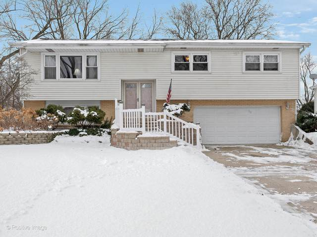 1117 Tamarack Drive, Darien, IL 60561 (MLS #10980022) :: Jacqui Miller Homes