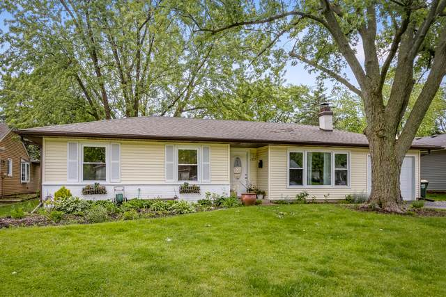 1527 N Kennicott Avenue, Arlington Heights, IL 60004 (MLS #10980121) :: Jacqui Miller Homes