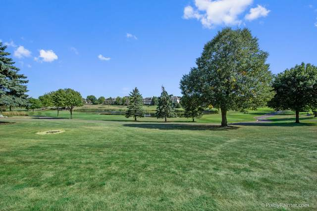 220 Boulder Drive, Lake In The Hills, IL 60156 (MLS #10980499) :: Jacqui Miller Homes