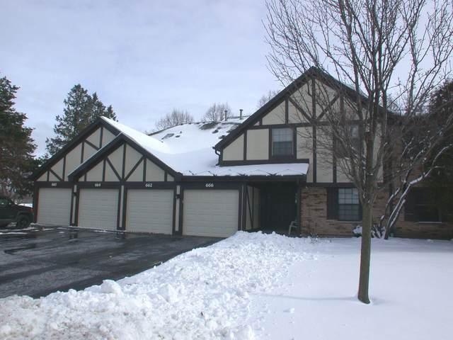 664 Elizabeth Drive #664, Wood Dale, IL 60191 (MLS #10980906) :: Littlefield Group