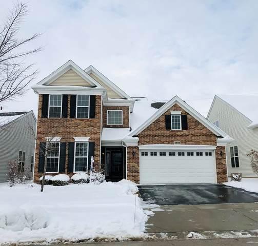 3884 Valhalla Drive, Elgin, IL 60124 (MLS #10981366) :: Jacqui Miller Homes