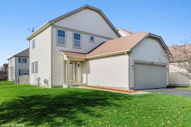 1107 Violet Lane, Joliet, IL 60431 (MLS #10981838) :: The Dena Furlow Team - Keller Williams Realty
