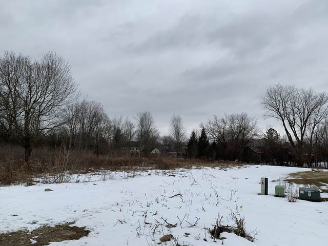 150 N Old Mill Road, Lincolnshire, IL 60069 (MLS #10981967) :: Helen Oliveri Real Estate