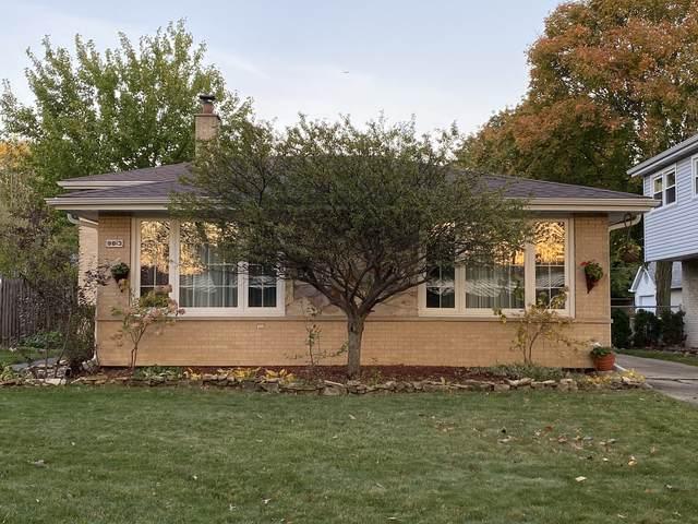 9813 Brandt Avenue, Oak Lawn, IL 60453 (MLS #10982129) :: The Dena Furlow Team - Keller Williams Realty
