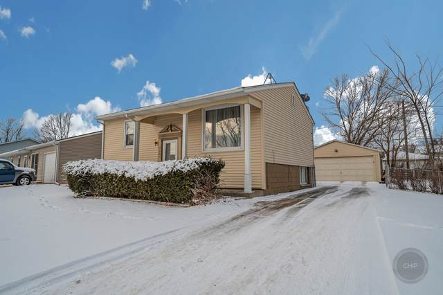 226 Karen Avenue, Romeoville, IL 60446 (MLS #10982196) :: The Dena Furlow Team - Keller Williams Realty