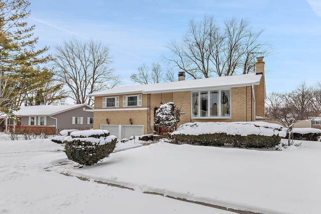 252 N Cady Drive, Palatine, IL 60074 (MLS #10982612) :: The Dena Furlow Team - Keller Williams Realty