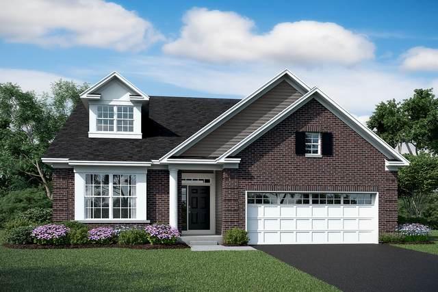23549 N. Birkdale Lot #49 Drive, Kildeer, IL 60047 (MLS #10982689) :: The Dena Furlow Team - Keller Williams Realty