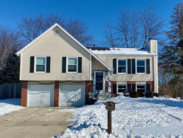 128 Waterford Court, Naperville, IL 60540 (MLS #10982717) :: Jacqui Miller Homes