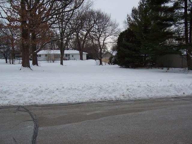 1234 Foxglave Drive, Batavia, IL 60510 (MLS #10983212) :: The Dena Furlow Team - Keller Williams Realty