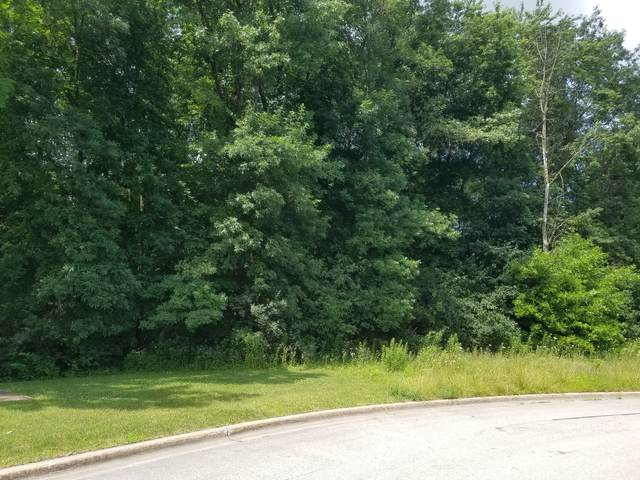 Lot #86 Merry Oaks Drive, Sycamore, IL 60178 (MLS #10985058) :: BN Homes Group