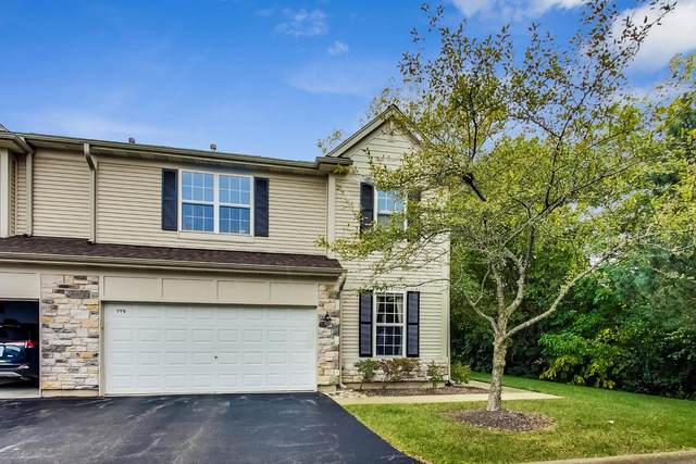 779 Dillon Court, Grayslake, IL 60030 (MLS #10985060) :: The Spaniak Team