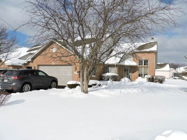 6700 Pondview Drive, Tinley Park, IL 60477 (MLS #10985172) :: The Dena Furlow Team - Keller Williams Realty