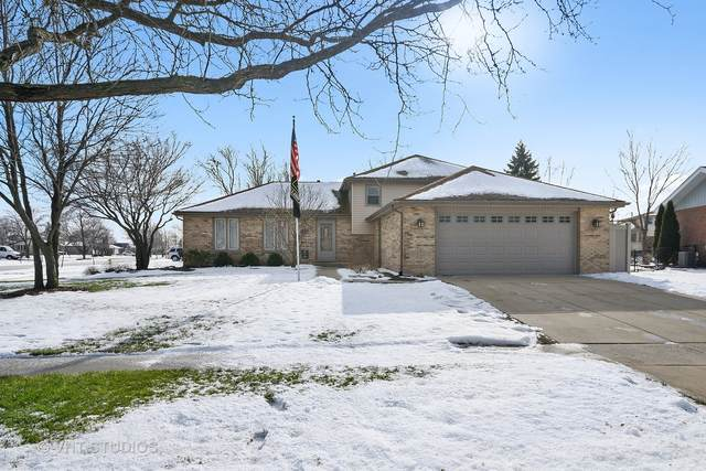 8619 Kathleen Lane, Tinley Park, IL 60487 (MLS #10985327) :: The Dena Furlow Team - Keller Williams Realty