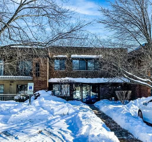 110 Old Oak Drive #232, Buffalo Grove, IL 60089 (MLS #10985645) :: The Dena Furlow Team - Keller Williams Realty