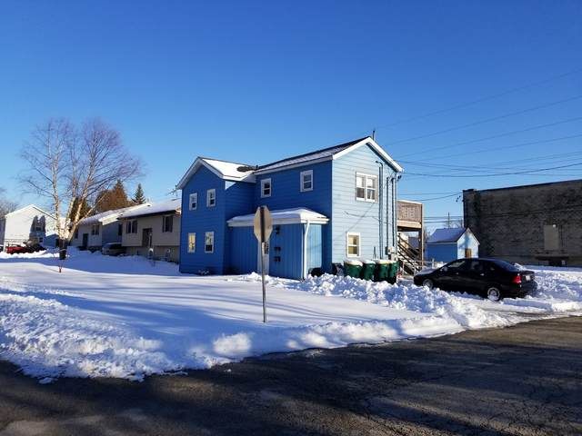 217 W North Street, Plano, IL 60545 (MLS #10987331) :: The Dena Furlow Team - Keller Williams Realty