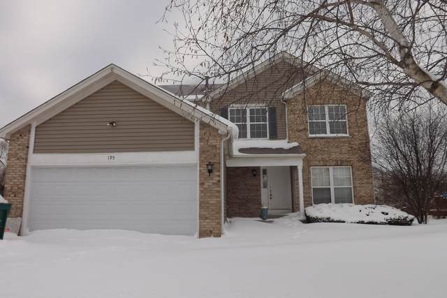 195 Blueberry Lane, Round Lake Beach, IL 60073 (MLS #10988142) :: The Dena Furlow Team - Keller Williams Realty