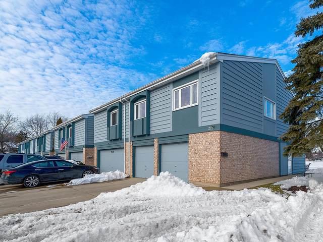 219 Lakeshore Lane #219, Bloomingdale, IL 60108 (MLS #10988553) :: Jacqui Miller Homes