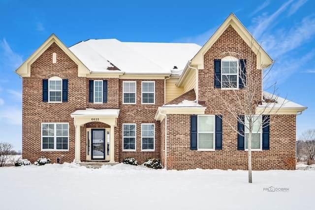 6625 Woodland Hills Drive, Lakewood, IL 60014 (MLS #10988628) :: The Dena Furlow Team - Keller Williams Realty