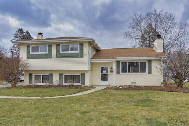 740 7th Avenue, Libertyville, IL 60048 (MLS #10988834) :: Jacqui Miller Homes