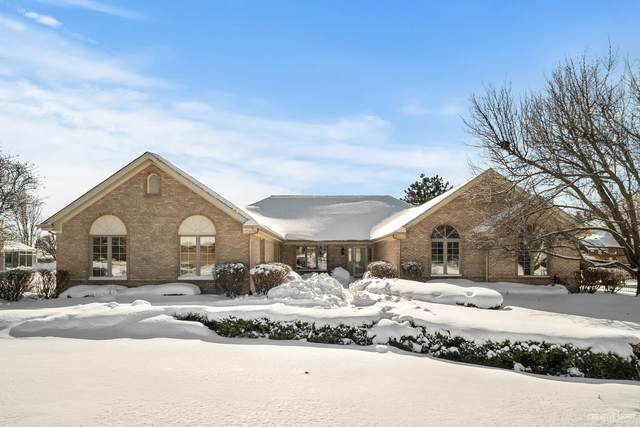 10707 Great Egret Drive, Orland Park, IL 60467 (MLS #10988983) :: Jacqui Miller Homes