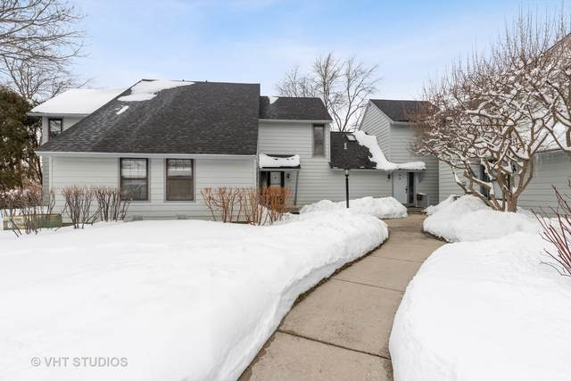 669 Beth Court, Gurnee, IL 60031 (MLS #10989518) :: Jacqui Miller Homes