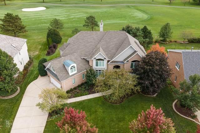 2419 Fawn Lake Circle N, Naperville, IL 60564 (MLS #10989559) :: The Dena Furlow Team - Keller Williams Realty