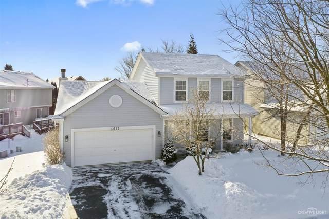 1012 Sanctuary Lane, Naperville, IL 60540 (MLS #10989568) :: Jacqui Miller Homes