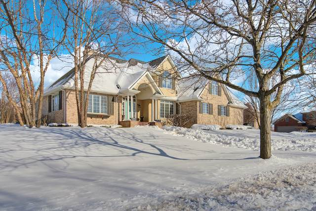 22463 Hinspeter Drive, Frankfort, IL 60423 (MLS #10990131) :: The Dena Furlow Team - Keller Williams Realty