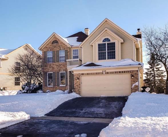 239 Superior Circle, Bartlett, IL 60103 (MLS #10990282) :: Jacqui Miller Homes