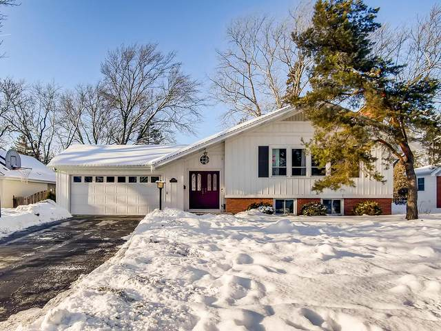 5704 Crestview Drive, Western Springs, IL 60558 (MLS #10990470) :: Jacqui Miller Homes