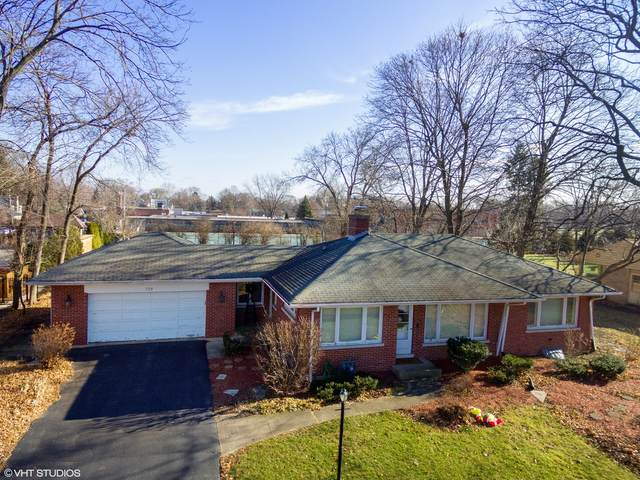 729 S Beverly Lane, Arlington Heights, IL 60005 (MLS #10991182) :: Helen Oliveri Real Estate