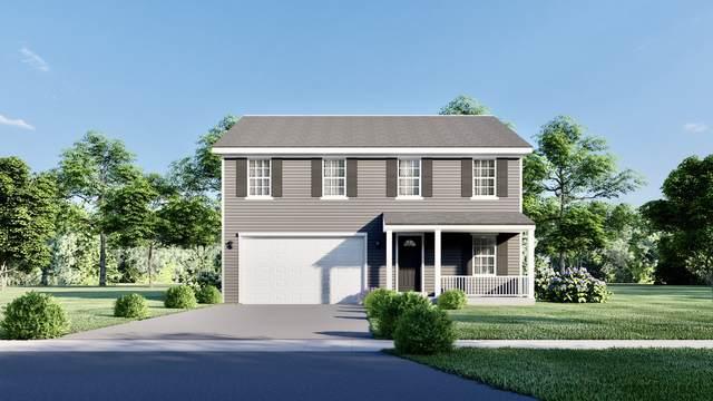 916 Bison Court, Oswego, IL 60543 (MLS #10991727) :: Helen Oliveri Real Estate