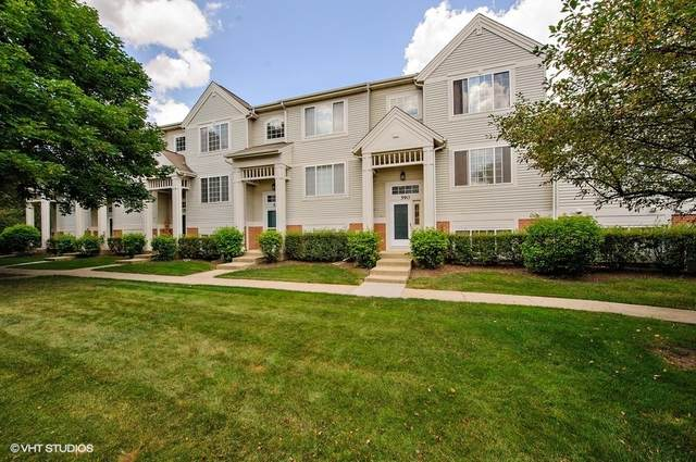 590 New Haven Drive #590, Cary, IL 60013 (MLS #10991824) :: The Dena Furlow Team - Keller Williams Realty