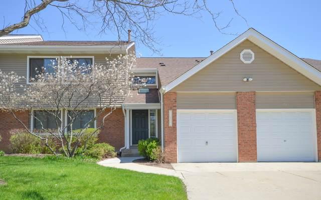224 Winding Oak Lane #224, Buffalo Grove, IL 60089 (MLS #10991987) :: Helen Oliveri Real Estate