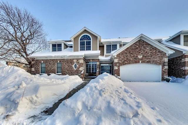 1245 S Falcon Drive, Palatine, IL 60067 (MLS #10992282) :: The Dena Furlow Team - Keller Williams Realty