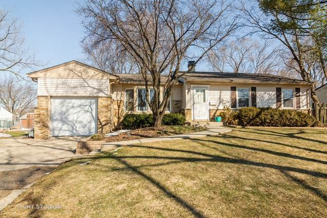 1336 E Joan Drive, Palatine, IL 60074 (MLS #10992323) :: Ryan Dallas Real Estate
