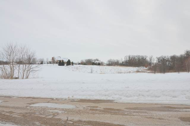 5119 Tuneberg Parkway, Belvidere, IL 61008 (MLS #10992400) :: The Dena Furlow Team - Keller Williams Realty