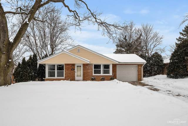 117 Briar Lane, North Aurora, IL 60542 (MLS #10992626) :: The Dena Furlow Team - Keller Williams Realty