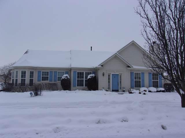21162 W Walnut Lane, Plainfield, IL 60544 (MLS #10993265) :: The Dena Furlow Team - Keller Williams Realty