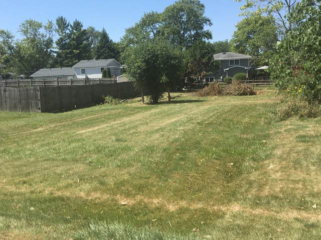 Lot 11 Ellis Avenue, Carol Stream, IL 60188 (MLS #10993275) :: The Dena Furlow Team - Keller Williams Realty