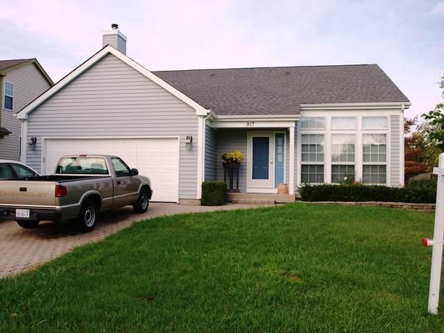 917 Cambridge Drive, Grayslake, IL 60030 (MLS #10993320) :: The Dena Furlow Team - Keller Williams Realty