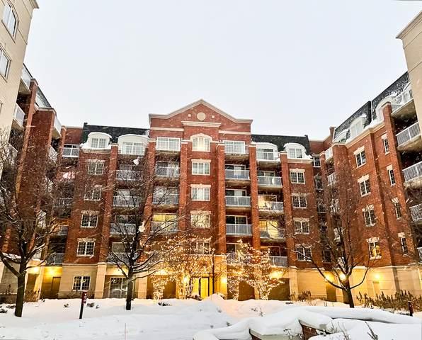 4811 N Olcott Avenue #507, Harwood Heights, IL 60706 (MLS #10993721) :: Jacqui Miller Homes