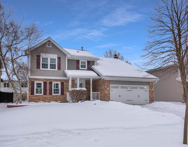 1630 Lois Ann Lane, Naperville, IL 60563 (MLS #10993954) :: Jacqui Miller Homes