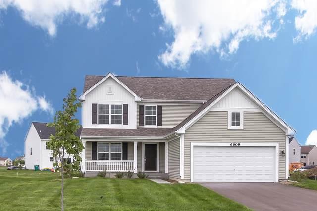 6608 Hadrian Lot#75 Drive, Joliet, IL 60431 (MLS #10994260) :: The Dena Furlow Team - Keller Williams Realty